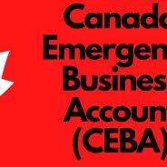 CEBA Loan tax implication rules